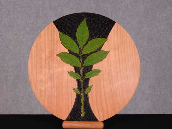First: Decorated Bowl or Platter: Phil Quinn
