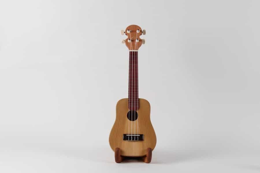 <h4>Highly Commended:</h4><h2> Paige Wood</h2><h5> Pink Ukulele</h5>