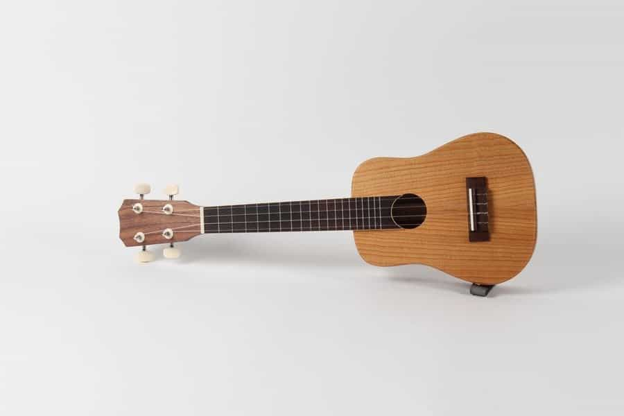 <h4>First:</h4><h2> Heather Campbell</h2><h5> Ukulele</h5>
