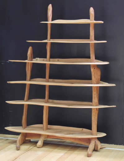 <h4>Highly Commended: </h4><h2>John Borup Christensen</h2><h5> Tree Shelves</h5>