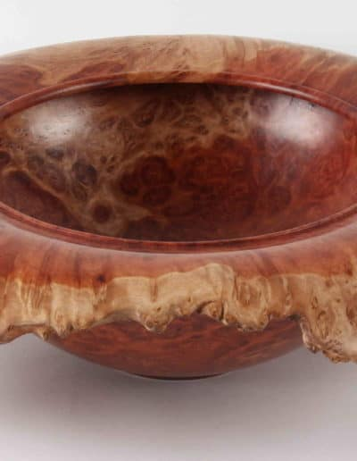 <h4>Highly Commended: </h4><h2> Terry Scott</h2><h5> Burl Bowl</h5>