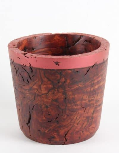 Red Beech Pot